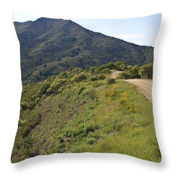 Throw Pillow featuring the photograph The Path To Tamalpais by Ben Upham III