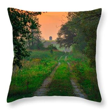 The Path We Follow Throw Pillow