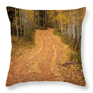 The Pathway To Fall Throw Pillow
