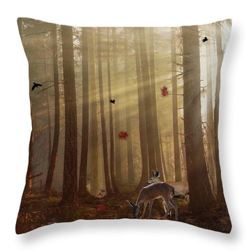 The Peace Of An Autumn Sunset Throw Pillow