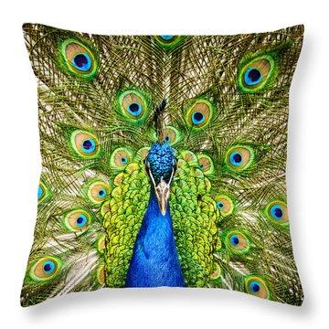 The Peacock Throw Pillow