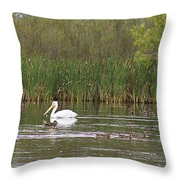 Throw Pillow featuring the photograph The Pelican And The Ducklings by Alyce Taylor