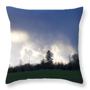 The Pending Storm Throw Pillow by Laurie Kidd