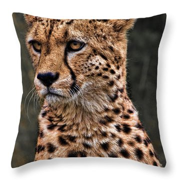 The Pensive Cheetah Throw Pillow by Chris Lord