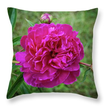 Throw Pillow featuring the photograph The Peonie by Mark Dodd