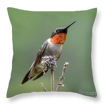 The Perfect Lookout Throw Pillow
