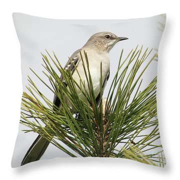The Perfect View Throw Pillow by Anita Oakley