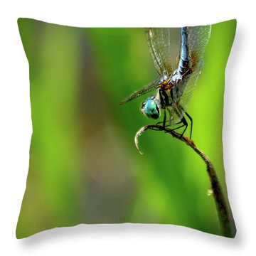 Throw Pillow featuring the photograph The Performer Dragonfly Art by Reid Callaway