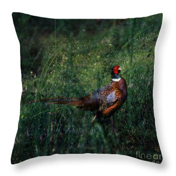 The Pheasant In The Autumn Colors Throw Pillow by Angel  Tarantella