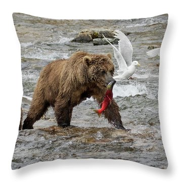 The Plight Of The Sockeye Throw Pillow