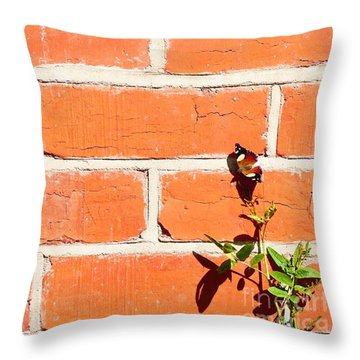The Poetry Of Ordinary Things Throw Pillow