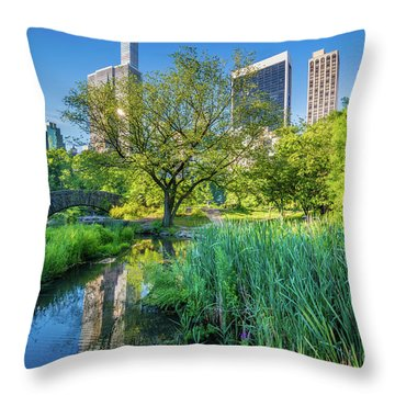 The Pond And Gapstow Bridge Throw Pillow