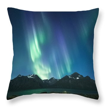 The Pond And The Fjord Throw Pillow