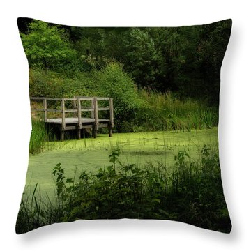 Throw Pillow featuring the photograph The Pond by Jeremy Lavender Photography
