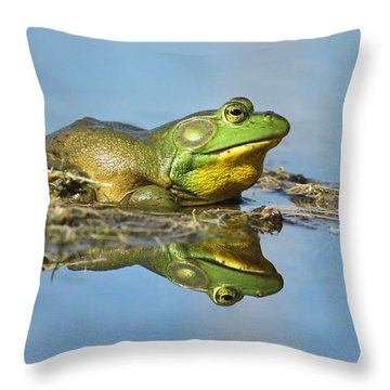 The Pond King Throw Pillow by Mircea Costina Photography