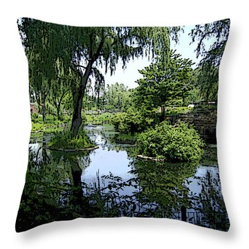 Throw Pillow featuring the photograph The Pond by Skyler Tipton