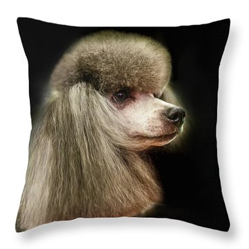 The Poodle Is A Breed Of Dog, One Of The Most Common Breeds In The Present. Throw Pillow