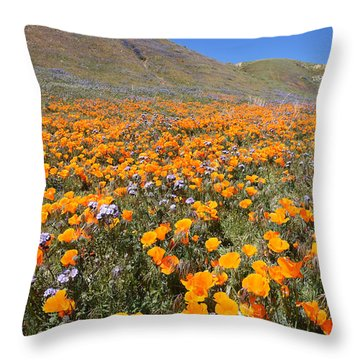The Poppy Field Throw Pillow