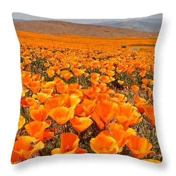The Poppy Fields - Antelope Valley Throw Pillow