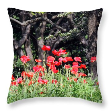 The Poppy Garden Throw Pillow by Teresa Schomig
