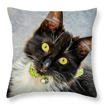The Portrait Of A Cat Throw Pillow