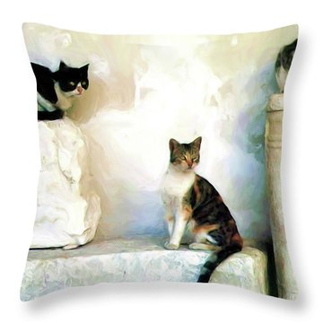 The Pose - Rdw250812 Throw Pillow