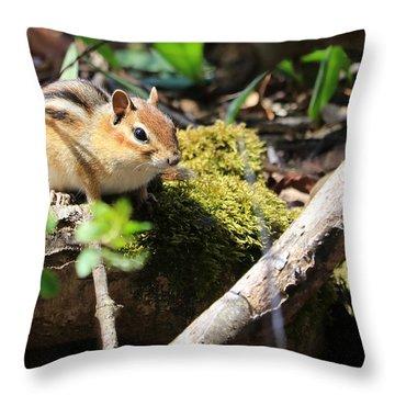 The Poser Throw Pillow