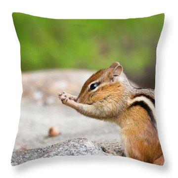 The Praying Chipmunk Throw Pillow