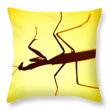 The Predator Throw Pillow by Charles Dobbs