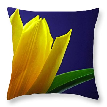 The Present Throw Pillow
