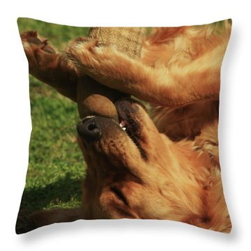 The Prize Inside Throw Pillow by Kim Henderson