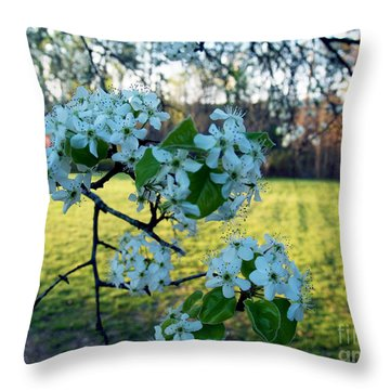 The Promise Of Spring 1c Throw Pillow