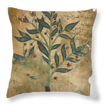 The Properties Of Plants Throw Pillow
