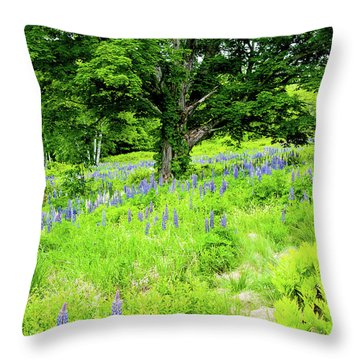 The Protector Throw Pillow by Greg Fortier