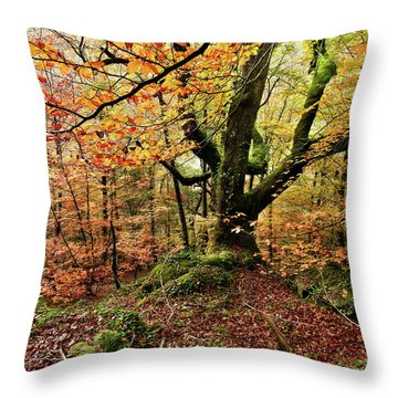 The Protector Throw Pillow by Jorge Maia