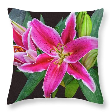 The Pulchritude Of Lady Lily Throw Pillow