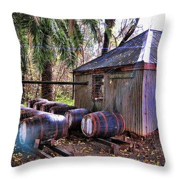 The Pumphouse Throw Pillow by Douglas Barnard