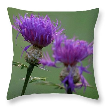 The Purple Bloom Throw Pillow