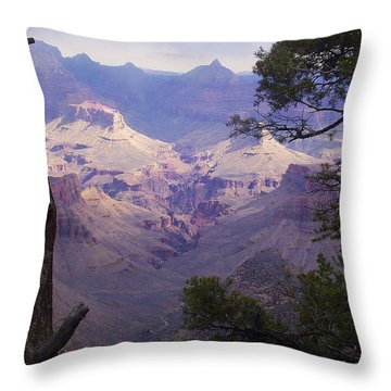The Purple Grand Throw Pillow by Marna Edwards Flavell