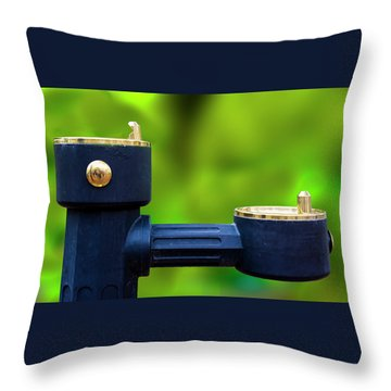 Throw Pillow featuring the photograph The Quencher by Paul Wear