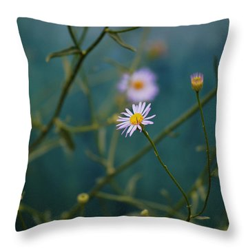 The Quiet Aster Throw Pillow