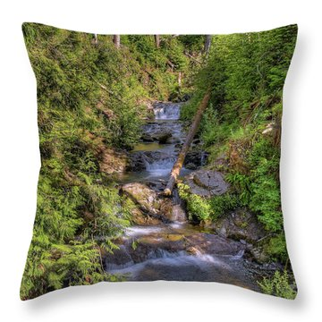 The Quinault Stream 2 Throw Pillow