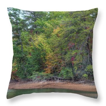 Throw Pillow featuring the photograph The Radiant Shore by John M Bailey