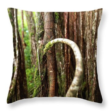 Throw Pillow featuring the photograph The Rainforest by Break The Silhouette