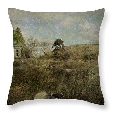 The Ram Throw Pillow by Marion Galt