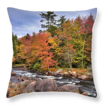 Throw Pillow featuring the photograph The Rapids On The Moose River by David Patterson