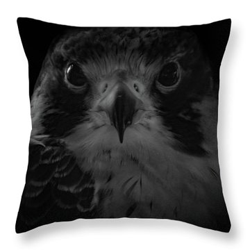 The Raptors, No. 10 Throw Pillow