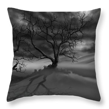 The Raven's Night Throw Pillow
