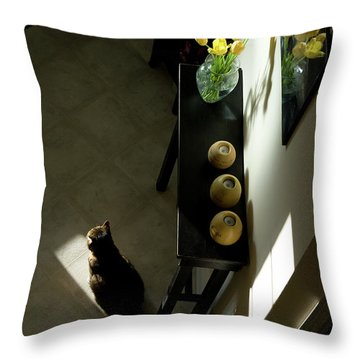 The Reception Hall Throw Pillow