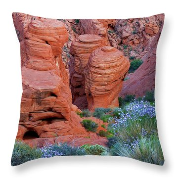The Red And The Blue Throw Pillow by Christine Till